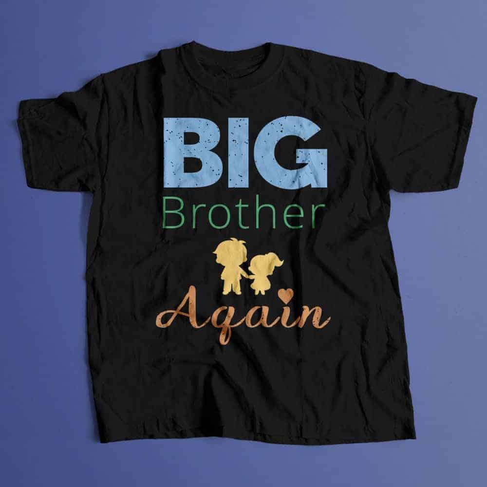 Big-Brother-Again